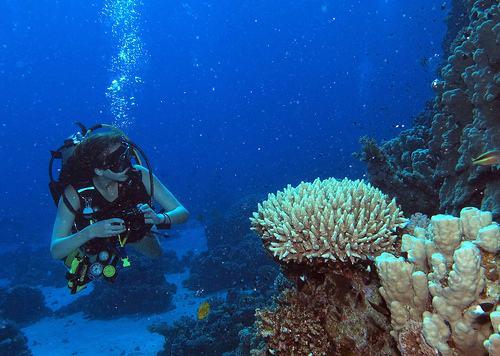 underwater-near-menorca-scuba-diver